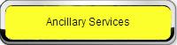 ancillary service